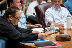 Voters Statewide to Fill OHA's Maui Post and 3 At-Large Seats