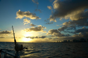 Waikiki-Diamond Head Fishing Area Closed for a Year