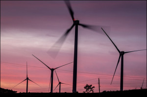 Kahuku 'Is Going To Be Surrounded by Wind Turbines'
