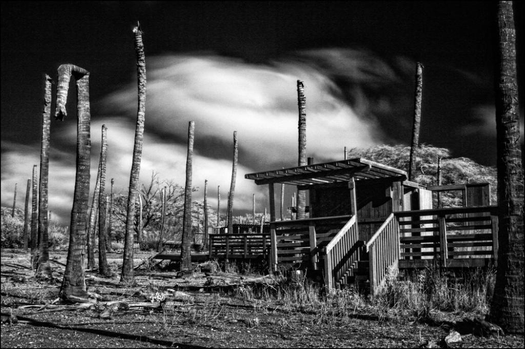Kaupoa: Visiting Molokai's Haunting 'Place of Thieves' - Honolulu Civil Beat