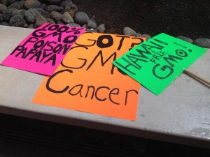 Maui Residents Want to Let Voters Decide on GMO Ban