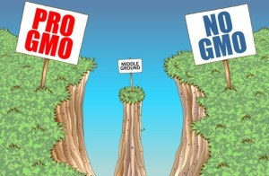 Maui Pro-GMO and Anti-GMO Groups Both Oppose Ballot Initiative Title