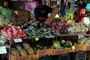 Farm to School Bills Aim to Teach Students to Produce Own Food