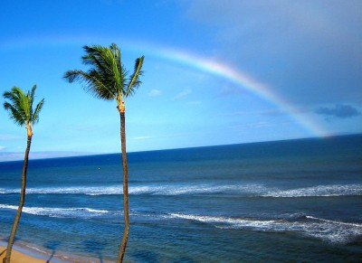 Living Hawaii: The Pipe Dream Of Teaching In Paradise Goes Global