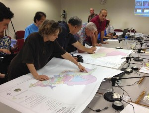 Elections on Track as Court Rules Against Hawaii Redistricting Suit