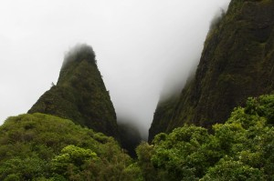 Hawaii Land Blog — Environment, Energy and Sustainability  — Jan. 9-15