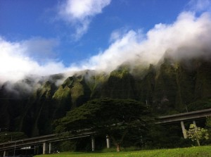 Hawaii Land Blog — Environment, Energy and Sustainability  — Jan. 2-8