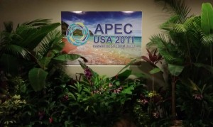 The Rising East: Split Opinions on APEC