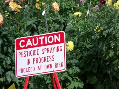 EPA Won't Ban Pesticide Already Banned In Hawaii