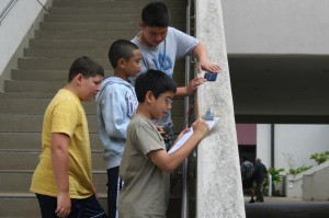 Hawaii Education Blog — Accountability and Achievement — Feb. 13-19