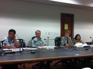 Hawaii Redistricting Panel Braces for Legal Challenge