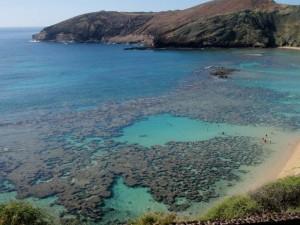 Does Hanauma Bay's Repair Process Need a Fix?