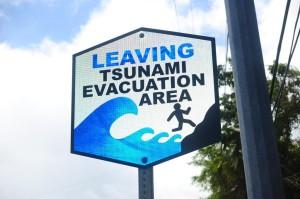 Big Island a Victim of Tsunami 'Bad Luck'