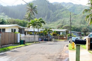 Census Snapshot: Hauula a Town on the Rise