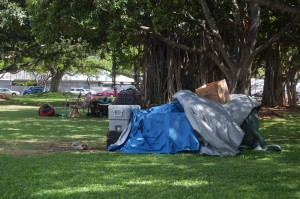 More Homeless Are Finding Shelter