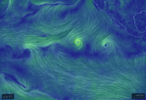 Hurricane Iselle Likely to Hit Islands as Tropical Storm on Thursday