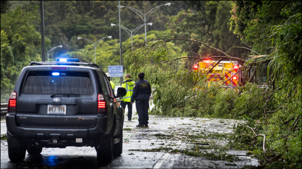 Police and firefighters prepare to cut and remove fallen tree on Pali Highway after high winds from Tropical Storm Islelle hit the windward side of Oahu on August 8, 2014