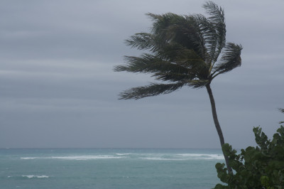 Power Interrupted As Storm Remnants Hit Big Island