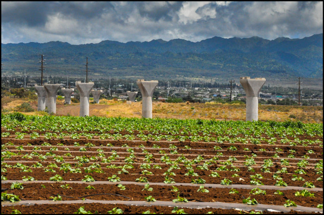 Hoopili Agriculture Farmland Land West Oahu Rail