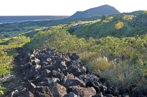 Curt Sanburn: Crowdsourcing the Preservation of the Ka Iwi Coast