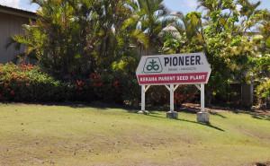 Hawaii Is Feeling the Seed Industry's Downturn
