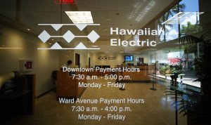 Hawaiian Electric Co. (HECO)