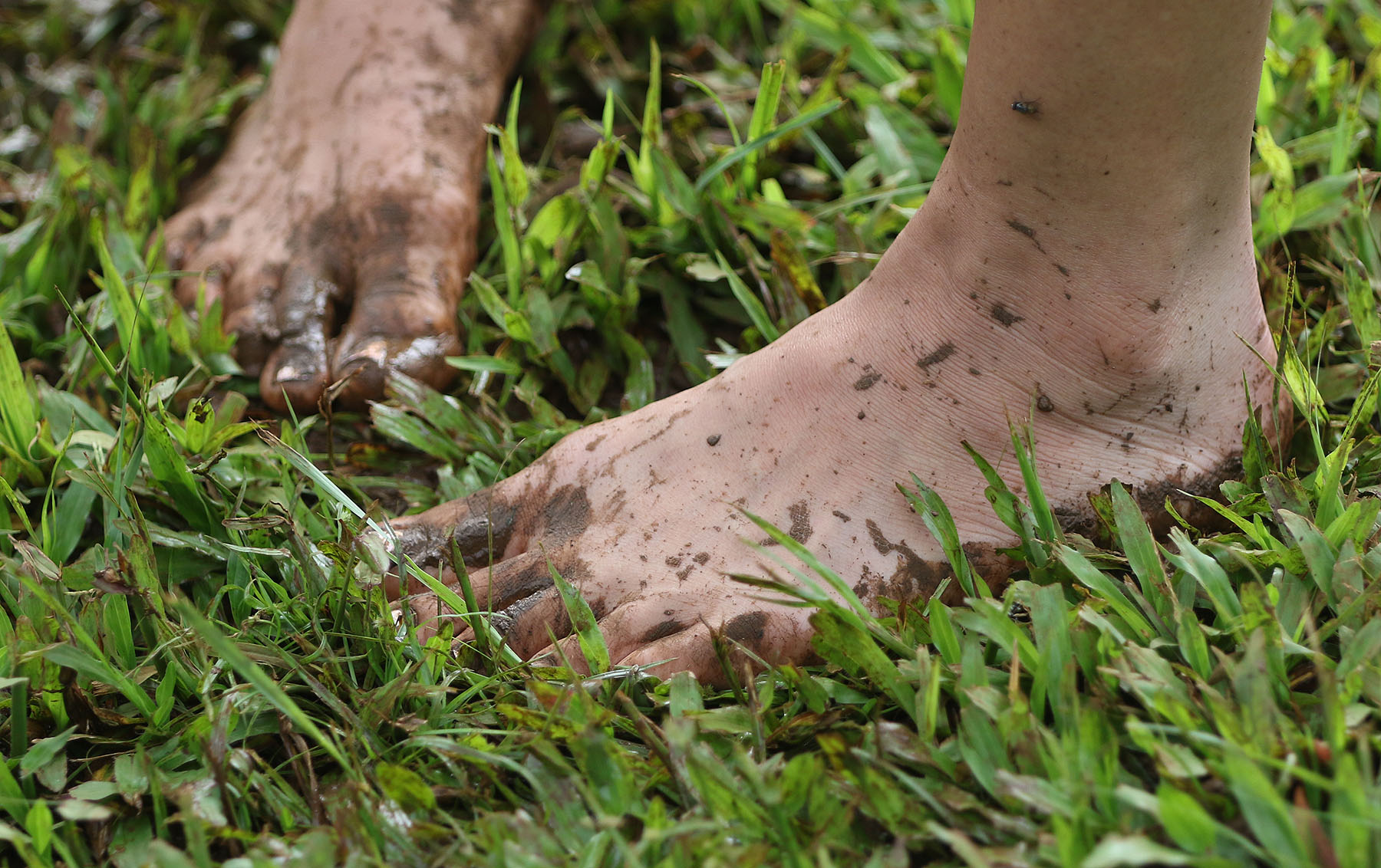 <p>One of the visitors to Ho'oulu 'Aina Nature Park goes barefoot in muddy grass.</p>