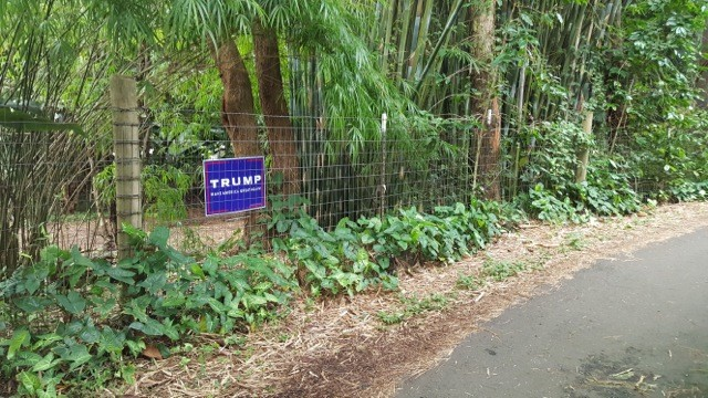 A lonely Donald Trump campaign sign on the Big Island.