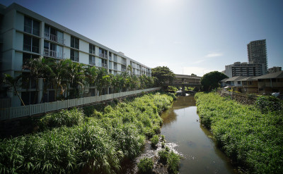 Ala Wai Flood Plan A Poorly Vetted Proposal