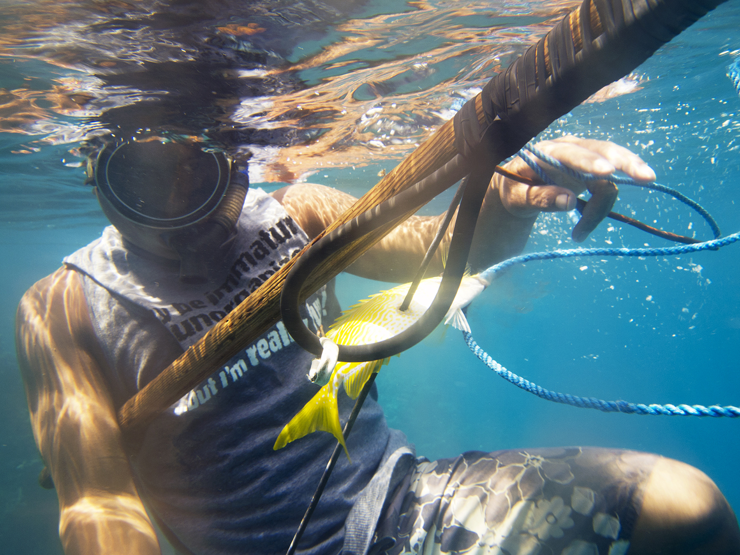 <p>Fishing is an important industry in Micronesia, not only for personal consumption but as a way to develop the economy through commercial operations.</p>