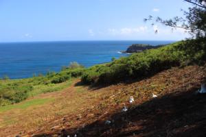 Ian Lind: War Crimes on Kauai?