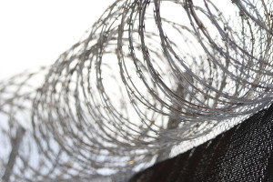 Ian Lind: Falling Short Again On Prisons