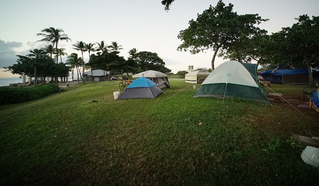 This fall, scores of homeless people migrated to Kakaako Waterfront Park after being swept at a nearby encampment near the Hawaii Children's Discovery Center.