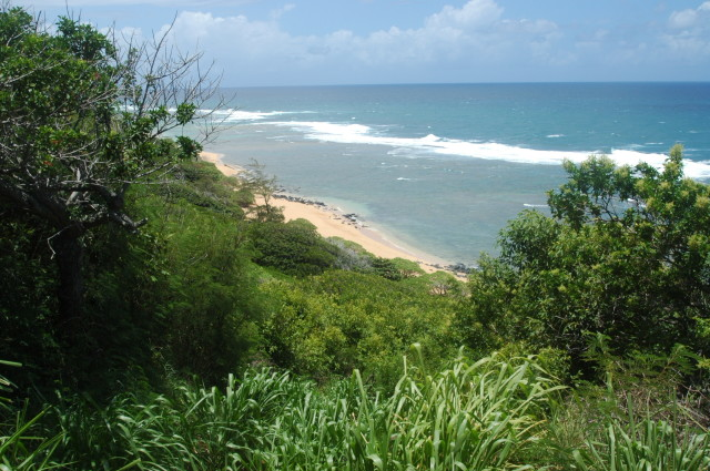 Larsen's Beach on Kauai is known for having a dangerous rip current. There are no lifeguards.
