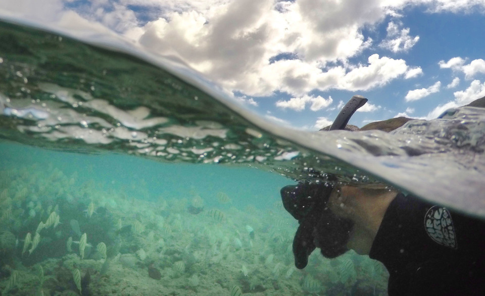 Stand Up Or Die: Snorkeling In Hawaii Is A Leading Cause Of Tourist Deaths