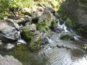 Water Bill Would Shortchange Farmers, Public Watershed Lands