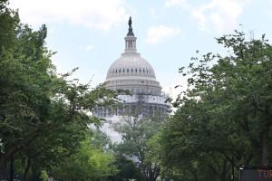 House Passes GMO Label Bill