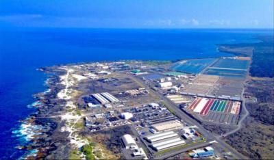 Big Island Aquaculture Gets Boost With Big Grant