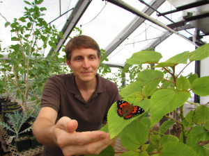Civil Geeks: It's Not Easy To Track Hawaii's Beautiful State Insect