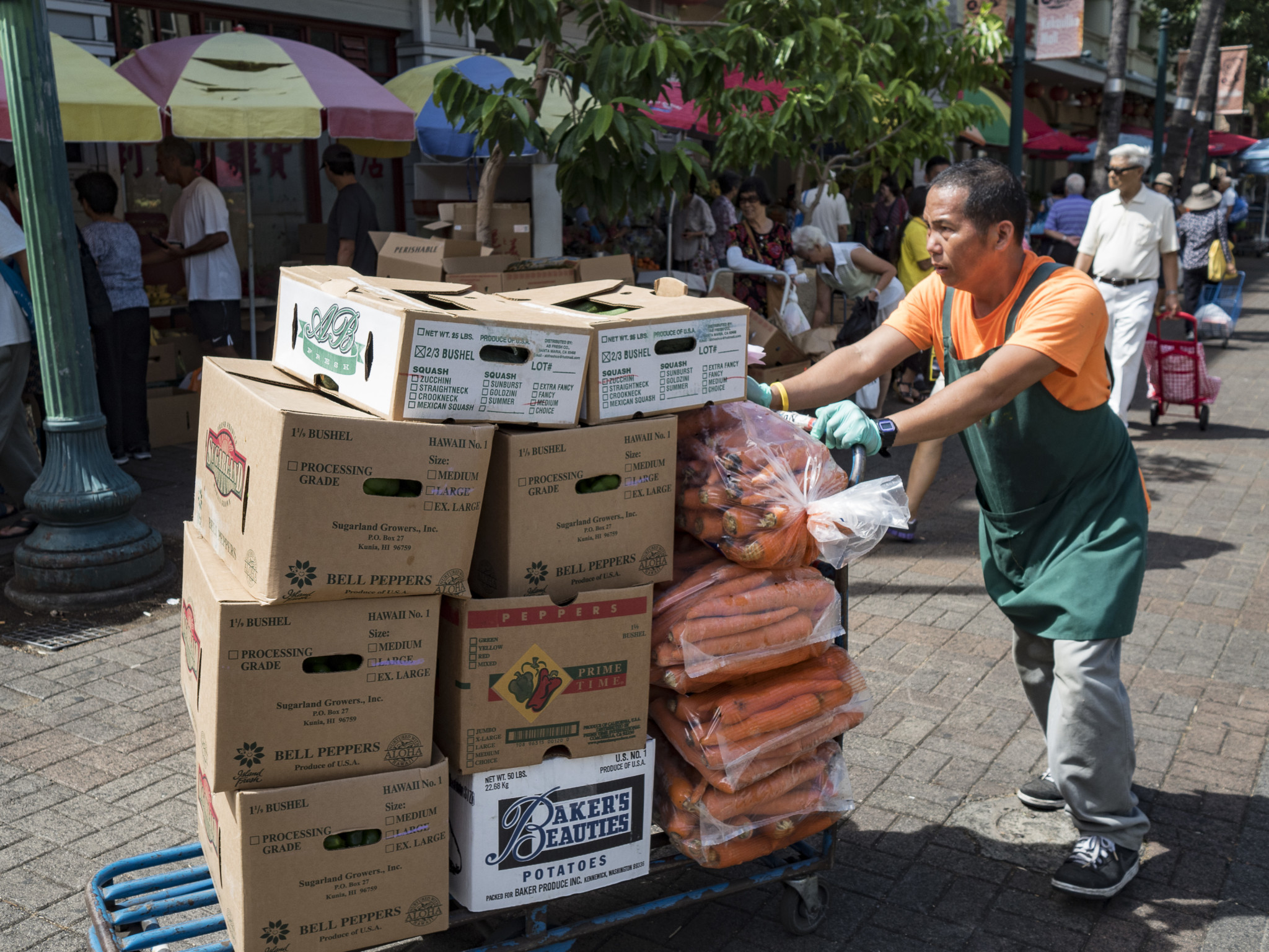 <p>A worker transports a load of produceas Honolulu's Chinatown awakens to another weekend morning.</p>