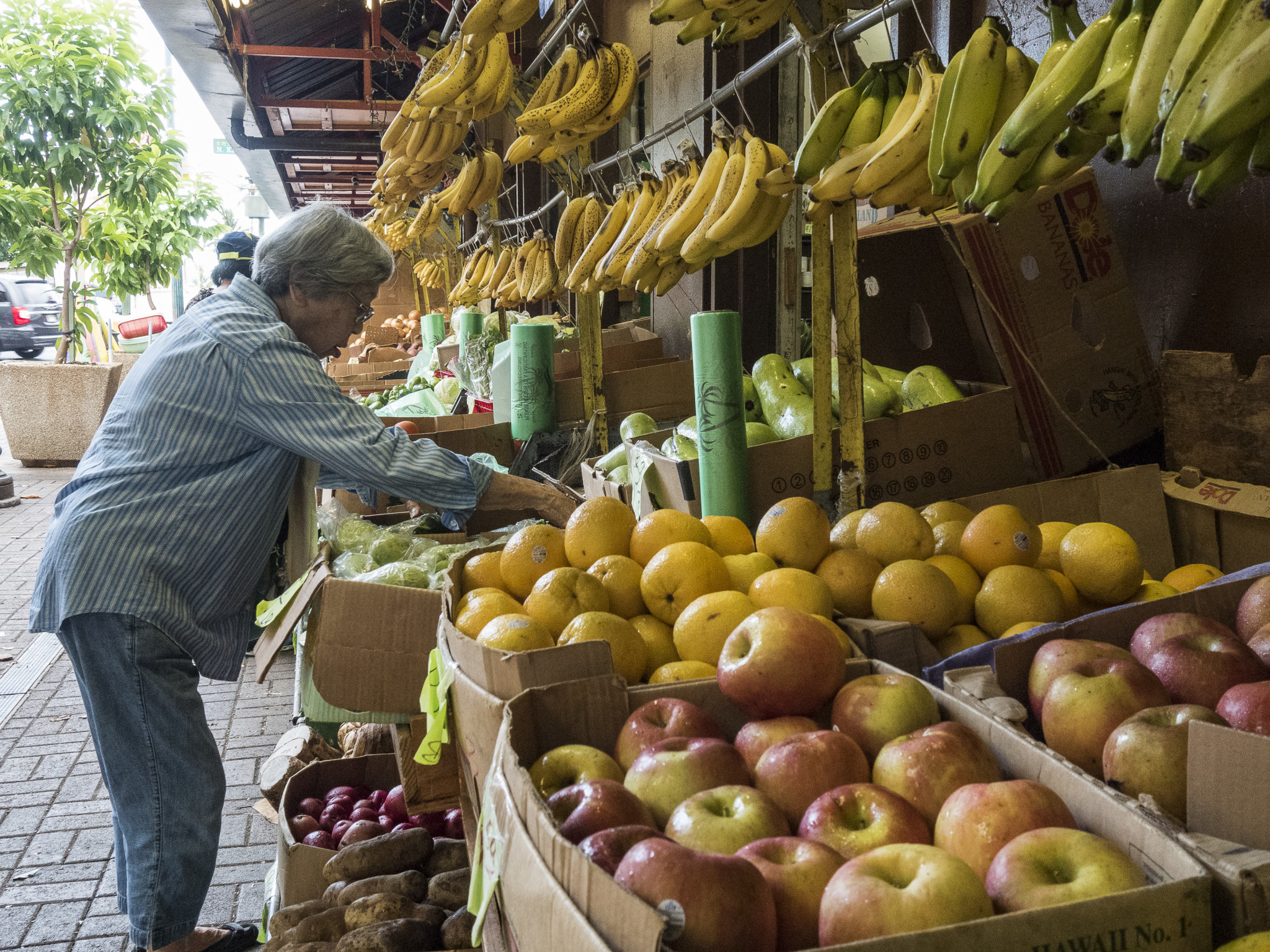 <p>Fresh fruit and vegetables are in abundance early.</p>