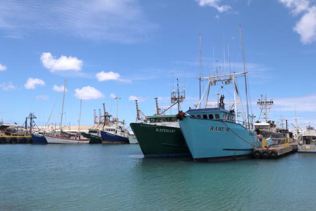 Hawaii longline fishing vessels are docked at Pier 38 in Honolulu.