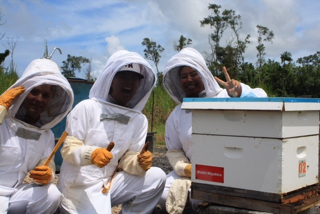 Beekeeping students at UH Hilo with an adopted hive. From left are Noelani Waters, Mandy Horiuchi and Danielle Tateishi.