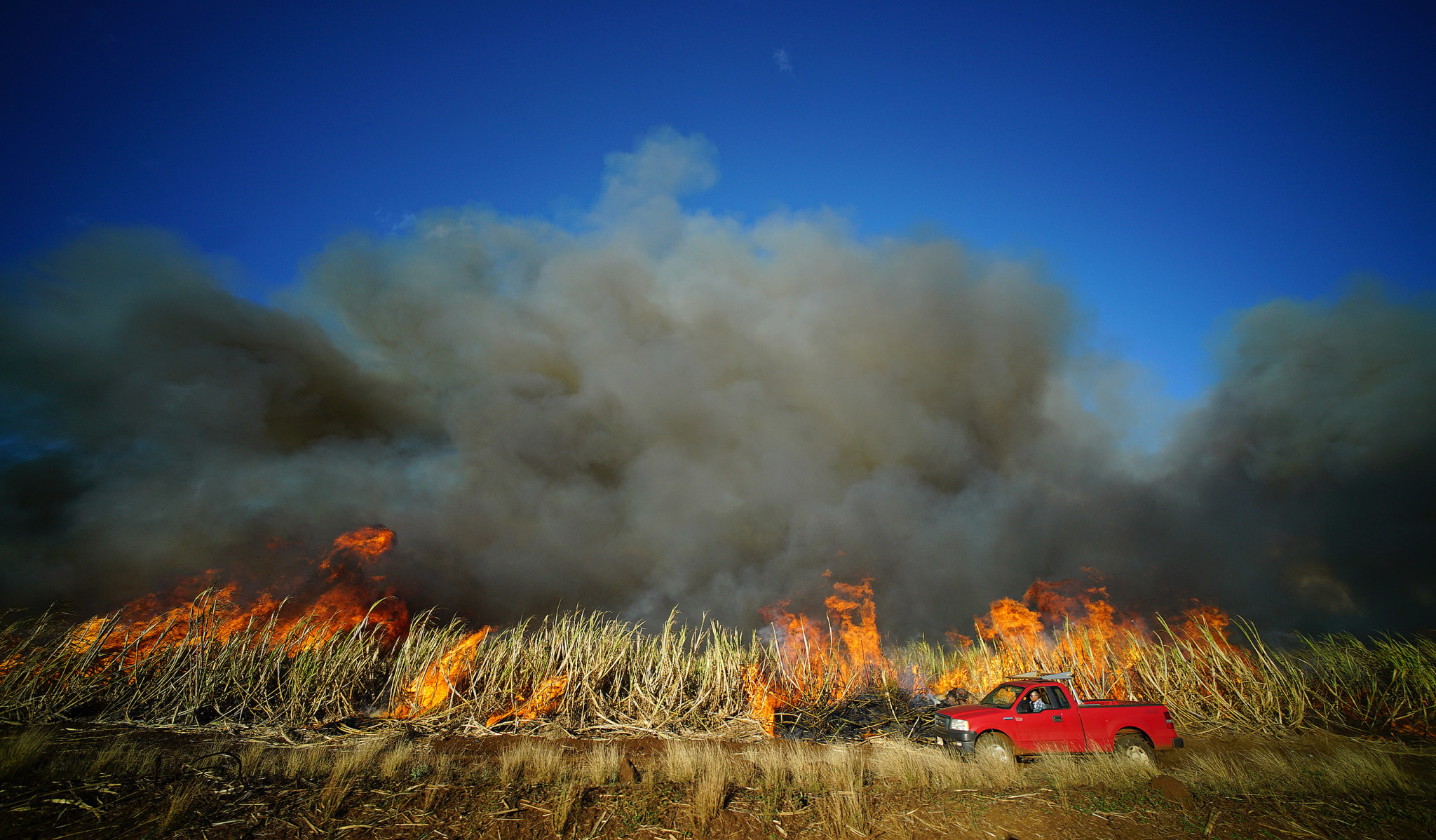 <p>Aug. 4: In a scene that would play out only a few more times, Hawaiian Commercial &Sugar Co. workers set a sugar cane field ablaze on Maui. The company announced in January that it was going to shut down its Maui operation, heralding the end of an era in the islands. <em>Cory Lum/Civil Beat</em></p>