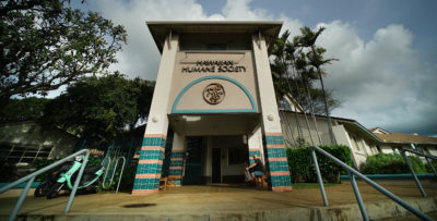 Denby Fawcett: Council Member Wants Audit of Hawaiian Humane Society