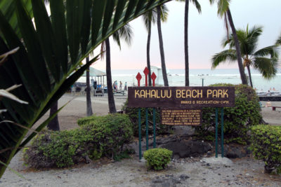Big Island: Sunscreen Ban May Come Too Late For Popular Snorkeling Spot