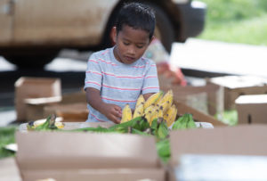 Why It's So Hard To Eat Healthy In Hawaii If You're Poor