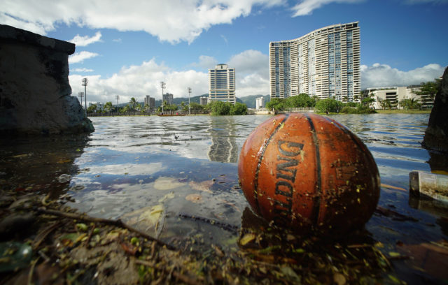 Floating debris along Ala Wai Canal as King Tides will peak thursday and thru the weekend. Honolulu, Hawaii. 24 april 2017