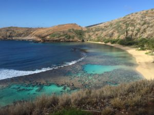 The Coronavirus Has Been Good For Hanauma Bay