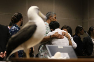 Man Gets 45 Days For Albatross Killings: 'I'm Disgusted With My Behavior'